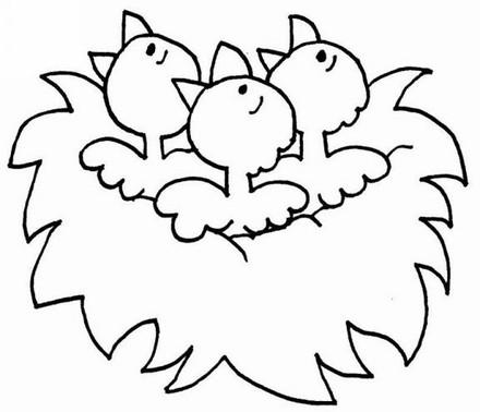 小鸟的简笔画