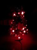 柏拉图的圣诞树
